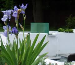 Small Picture Garden Design Surrey Cherry Mills Garden Design