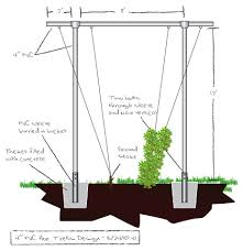 Small Picture Trellis Construction Hops trellis Beer and Gardens