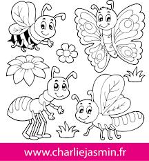 Coloriage Insecte Colorier Dessin Imprimer Deco Creche