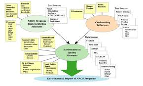 High School Earth Science Use and Conservation of Resources     Ecology and Society