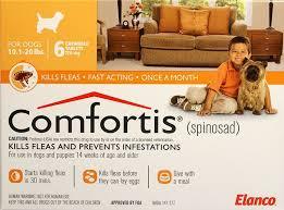 comfortis flea pill for cats. Wonderful Pill With Comfortis Flea Pill For Cats A