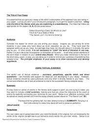 college essay format template co college essay format template