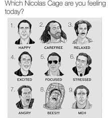 Nicolas Cage Emotion Chart 15 Nicolas Cage Memes To Remind You Who Our Supreme Overlord