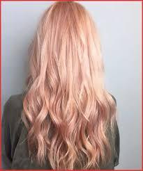 Salerm Semi Permanent Hair Color Chart