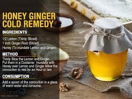 honey ginger cold remedy