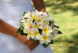 flowers for a beach wedding. beach wedding bouquet with golden plumeria flowers for a