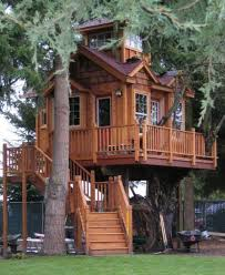 tree house plans for adults. Exellent Adults More Ideas Below Amazing Tiny Treehouse Kids Architecture Modern Luxury  Interior Cozy Backyard Small Masters Plans Photography How To  Inside Tree House For Adults Pinterest