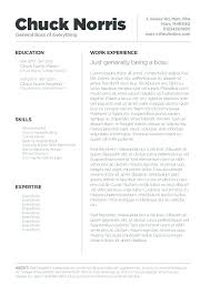 Resume Templates For Pages Magnificent Iwork Pages Resume Templates Pohlazeniduse