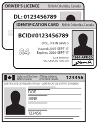 insurance identification card with voter id elections bc and car insurance