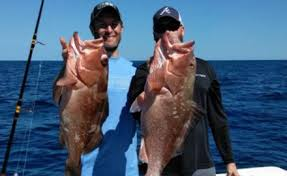 Florida Sportsman Tide Charts Explore Florida Sportsman Thenightliner