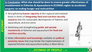 Economic Community of West African States (ECOWAS): Enhancing the Con…