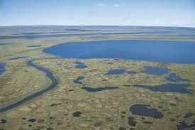 Tundra Climate Britannica