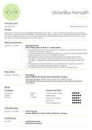 Server Experience Resume Examples Resume Examples By Real People Beverage Server Resume