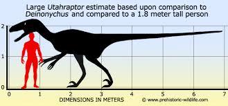 Velociraptor Size Chart Dinosaurs Pitbulls Go Pitbull Dog Forums
