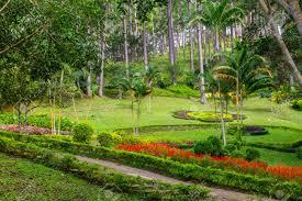 Tropical Flower Garden Landscape Designs Landscape Design Of Relax Tropical Garden