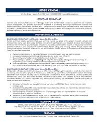 It Consultant Resume Example Business Sample Format Independent