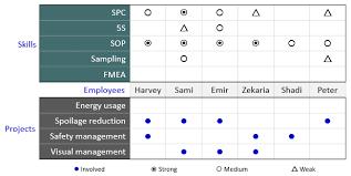 Matrix Diagram Continuous Improvement Toolkit