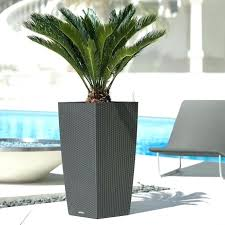 furniture lush grass in low h modern planter outdoor rated modern with regard to modern planters indoor decorations modern indoor planters uk