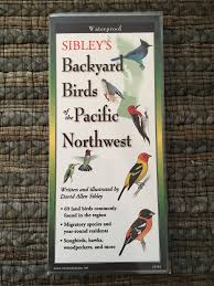 Varied Thrush Identification All About Birds  Cornell Lab Of Backyard Birds Pacific Northwest