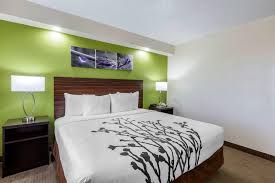 a bed or beds in a room at sleep inn near busch gardens usf