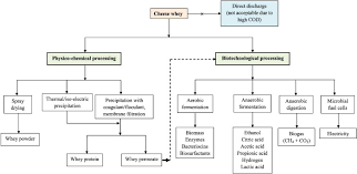 Whey Processing Flow Chart Cheese Whey A Potential Resource To Transform Into