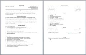 Two Page Resume Sample Experience Resumes