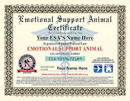 Amazon Com Emotional Support Animal Certificate Customizable