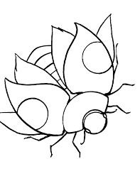 Small Picture Lady Bug Coloring Page Free Printable Ladybug Coloring Pages For