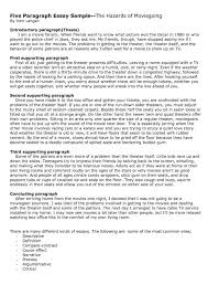 5 Paragraph Essay Example 5 Paragraph Argumentative Essay Examples Writings And Essays Apa