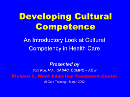 cultural competence in healthcare rue  developing cultural competence an introductory look at cultural competency in health care presented by tom rue ldquo
