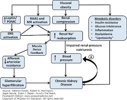 Pathophysiology Of Hypertension Hursts The Heart 14e