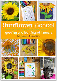 Sunflower Growing Chart Sunflower Height Chart Nurturestore