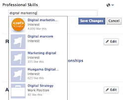 professional skills list facebook adds professional skills section to user profiles rivs
