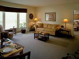 ... Best Small Apartment Living Room Ideas With Apartment Living Room ...
