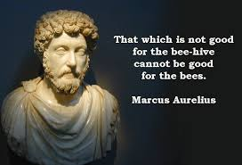 Marcus Aurelius Quotes Adorable Marcus Aurelius Quotes That Which Is Not Good For The Beehive