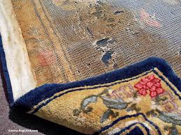 pet puddles on rugs uh oh urine trouble rug