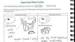 Scaffolds For Field Trips Science Notebook Corner