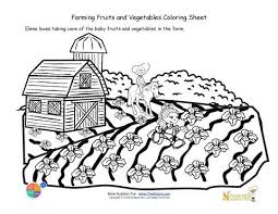 Small Picture 41 best Nutrition Coloring Pages images on Pinterest Adult