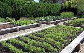 vegetable garden boxes royalty free