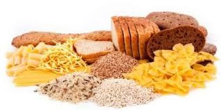 Kohlenhydrate gewichtszunahme