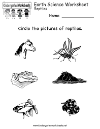 1000+ images about Elementary Science Ideas :) on Pinterest ...Kindergarten Science Worksheets