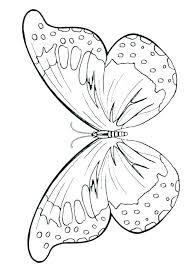 Free Coloring Pages Butterfly Book Of Butterflies Page Educational