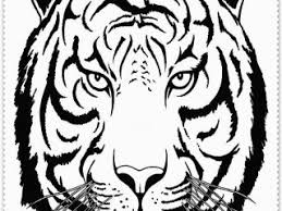 Small Picture Coloring Pages Of Tigers Miakenasnet