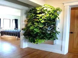 wall planters indoor indoor living wall planter indoor living wall planters ideas garages best wall planter wall planters