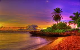 Free download Tropical Beach HD ...
