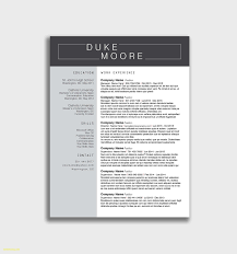 Resume Modern Template Free Download 26 Free What Does A Modern Resume Look Like Sample Template Download