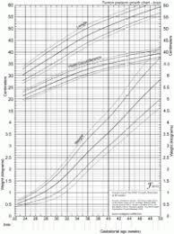 Premature Baby Height Weight Chart Growth Of Premature Babies Chart Baby Boy Growth Chart