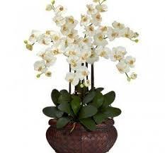 Small Picture Silk Arrangements For Home Decor Decor Love