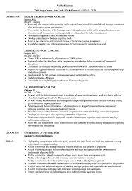 Sales Support Analyst Resume Samples Velvet Jobs