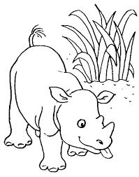 Imprimer Animaux Animaux Carnivores Num Ro 16263